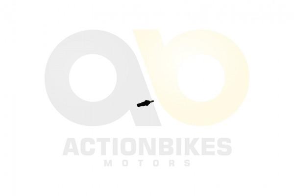 Actionbikes XYPower-XY500ATV-Temperatursensor-WasserThermostatgehuse-fr-Anzeige 31373633312D35303230
