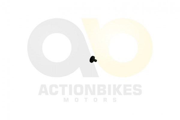 Actionbikes Shineray-XY350ST-2E-Tachogeber-Magnet 33373035303031392D31 01 WZ 1620x1080