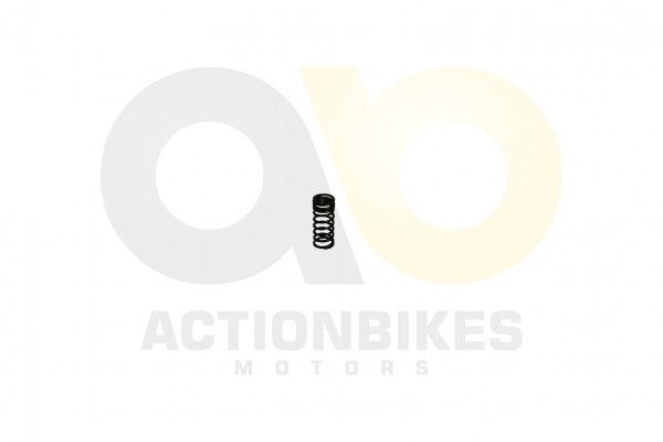 Actionbikes Egl-Mad-Max-300-Ventilfeder-klein 4D34302D3134313030342D3030 01 WZ 1620x1080