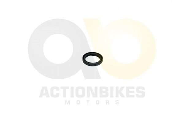 Actionbikes Simmerring-45609-Kurbelwelle-Variomatik-Getriebehauptwelle-Jetpower-700-cc 4130333030353