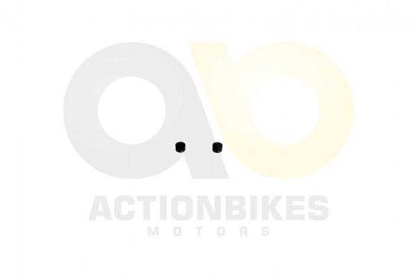 Actionbikes Lingying-250-203E-Ventilschaftdichtung-Set-2-Stck-Mad-Max-250 31353730312D4C4130312D3030