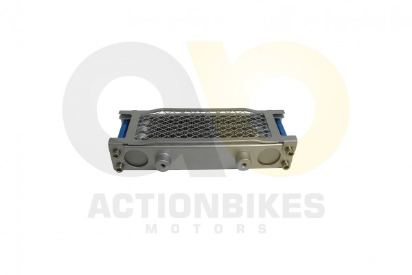 Actionbikes Shineray-XY200ST-9-lkhler 3137303430303330 01 WZ 1620x1080