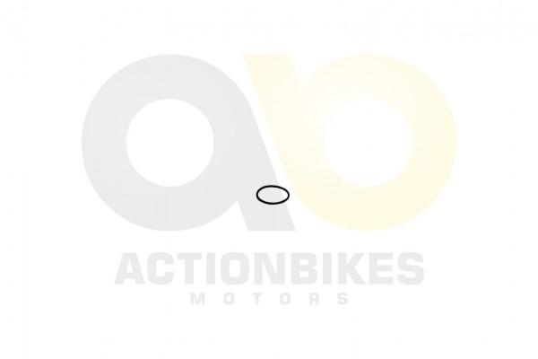 Actionbikes Feishen-Hunter-600cc-Dichtring-Ansaugrohr 382E332E30312E30303930 01 WZ 1620x1080