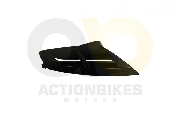 Actionbikes Dinli-450-DL904-Verkleidung-Khler-links-schwarz 463135303039382D3037 01 WZ 1620x1080