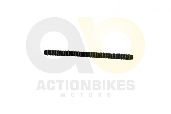 Actionbikes Shineray-XY250SRM-Khlerschlauch1320380 31373036303032392D32 01 WZ 1620x1080