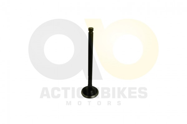 Actionbikes XY-Power-XY500ATV-2-Auslassventil 31323931322D35303230 01 WZ 1620x1080