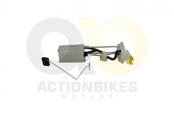 Actionbikes XYPower-UTV-XY500UEL-Benzinpumpe 31353131302D35343030 01 WZ 1620x1080