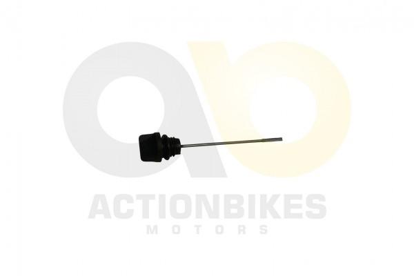 Actionbikes Shineray-XY250STXE-lmestab 31353631312D3037312D30303030 01 WZ 1620x1080