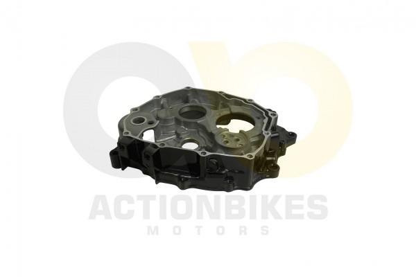 Actionbikes Shineray-XY200STIIE-B-Motorgehuse-rechts-schwarz 31313131302D3037302D30303030 01 WZ 1620
