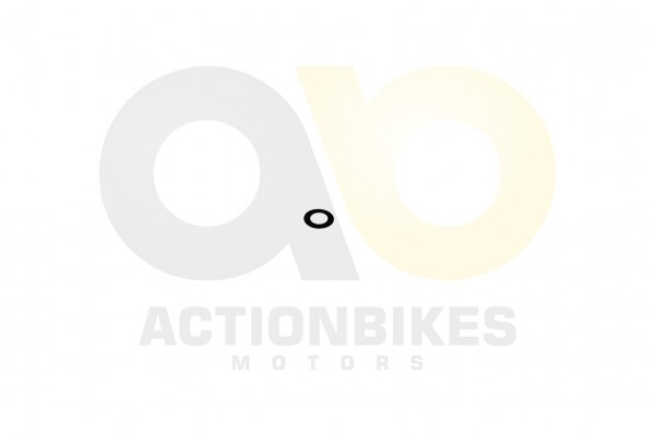 Actionbikes Shineray-XY250SRM-Anlasserradwelle--Unterlegscheibe 32383331322D3037302D30303030 01 WZ 1