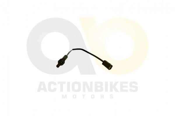 Actionbikes XYPower-XY1100UTV-Lamdasonde 4631303132303330 01 WZ 1620x1080