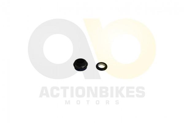Actionbikes Egl-Mad-Max-300---Wasserpumpendichtungsset 5259313235532D313936323031 01 WZ 1620x1080