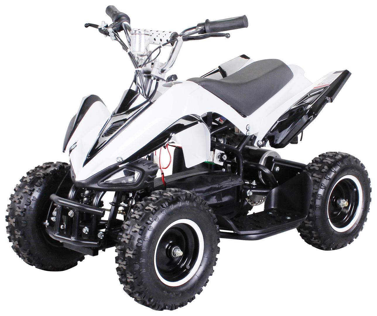 mini elektro kinder racer 800 watt atv pocket quad elektro kinder quads kinder fahrzeuge. Black Bedroom Furniture Sets. Home Design Ideas