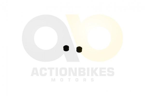 Actionbikes Shineray-XY150STE--XY200ST-9-Ventilschaftdichtung-Satz-2-Stck-5mm 4759362D3132352D303030