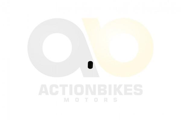 Actionbikes Shineray-XY350ST-EST-2E-Motorhlften-Passhlse-12x16 39313532312D3132303031363030303030 01