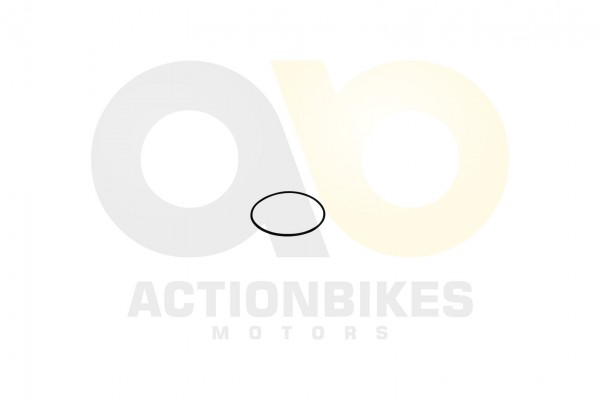 Actionbikes Feishen-Hunter-600cc-Dichtung-Differenzial-Stellmotor-O-Ring-80x265 302E30362E3031373030