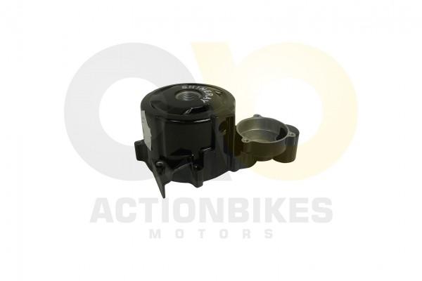 Actionbikes Shineray-XY250STXE-Lichtmaschinengehuse-schwarz 31313431312D3037312D30303030 01 WZ 1620x