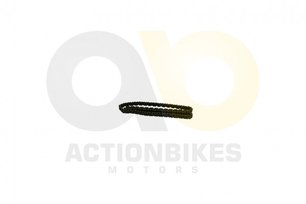 Actionbikes XYPower-XY500ATV-Steuerkette 31323734312D35303230 01 WZ 1620x1080
