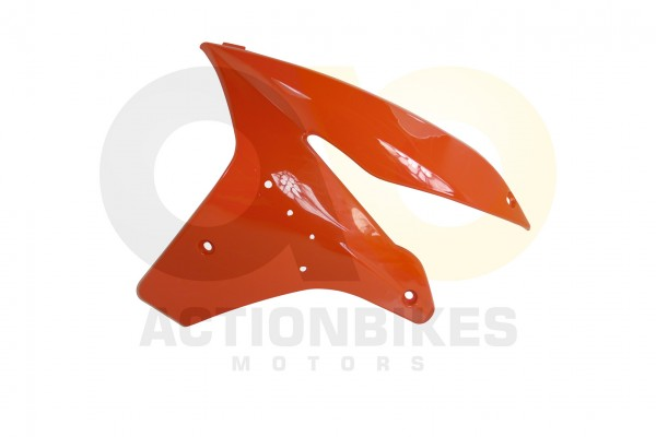 Actionbikes Shineray-XY250STXE-Verkleidung-vorne-links-orange 34333432312D3336382D30303034 01 WZ 162