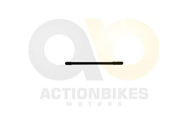 Actionbikes Shineray-XY250STXE-Stehbplzen-B-fr-Zylinder-63x1375 31323334332D3037312D30303030 01 WZ 1