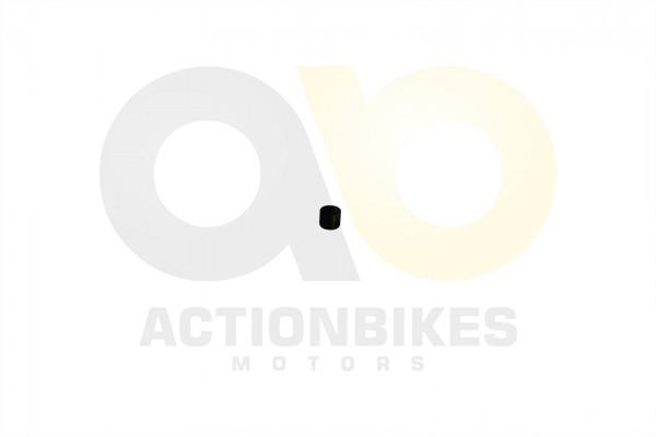Actionbikes Dongfang-DF500GK-Auspuffendtopf-Silentbuchse-Befestigung-82019 3033303135362D31 01 WZ 16