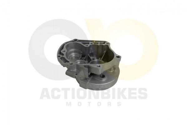Actionbikes 139QMB-Getriebegehuse 313339514D422D313530303031 01 WZ 1620x1080