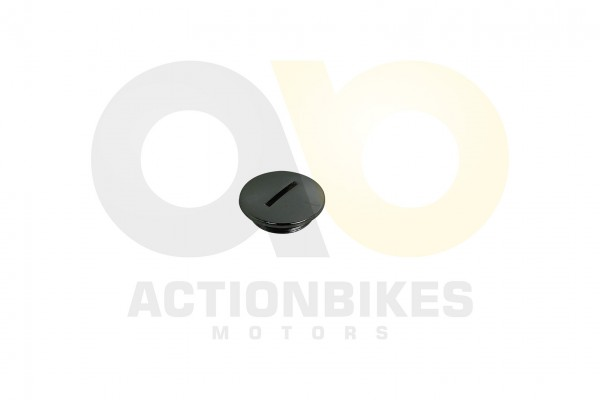 Actionbikes Shineray-XY125-11-Kurbelwellendeckel 3134303630303031 01 WZ 1620x1080