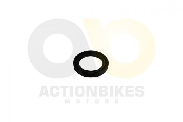Actionbikes Simmerring-40558-Radnabe-innen-XY500ATV 393931312D343035353030 01 WZ 1620x1080
