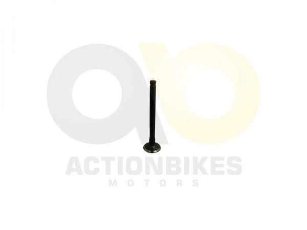 Actionbikes Motor-139QMA-Auslassventil 3130313430312D313339514D412D30303030 01 WZ 1620x1080
