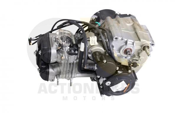 Actionbikes Eagle-Mad-Max-300-Motor-300cc-5-Gang 59585A432D4630303030392D31 01 WZ 1620x1080