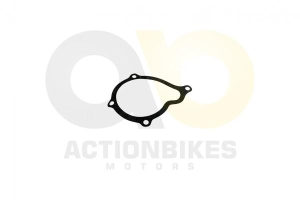 Actionbikes XYPower-XY500ATV-Dichtung-Wasserpumpengehuse 31373434312D35303230 01 WZ 1620x1080