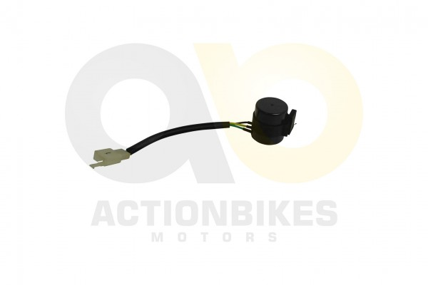 Actionbikes Shineray-XY200ST-9-Blinkerrelay-XY200ST-6AXY250ST-5-BR-006-LED 3331303430303234 01 WZ 16