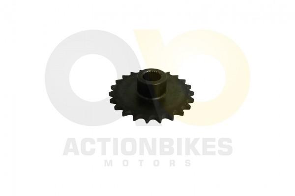 Actionbikes Shineray-XY250ST-9C-Ritzel-vorne-23-Zhne 30333135303035362D303030312D31 01 WZ 1620x1080