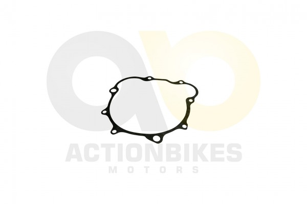 Actionbikes Speedslide-JLA-21B-Speedtrike-JLA-923-B-Dichtung-Lichtmaschinengehuse 313130343030303735