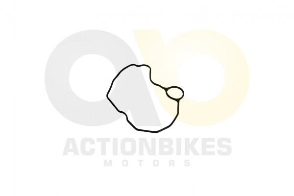 Actionbikes Shineray-XY250SRM-Dichtung--Abgasrckfhrung-Rohr 32303635312D3131342D303030302D31 01 WZ 1