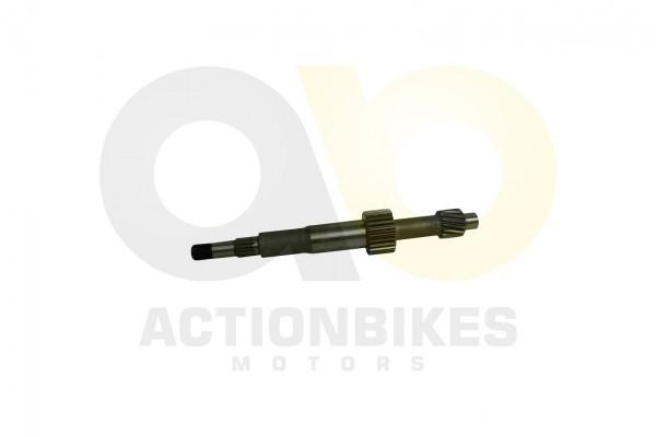 Actionbikes Motor-260cc-XY170MM-Getriebe-Eingangswelle 31323730323530313031 01 WZ 1620x1080
