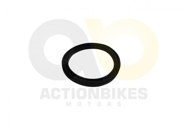 Actionbikes Znen-ZN50QT-F8-Dichtring-Tankgeber 353051542D462D303630313033 01 WZ 1620x1080