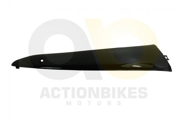 Actionbikes Znen-ZN50QT-HHS-Verkleidung-Seite-unten-links-schwarz 36343330362D444757322D393030302D34
