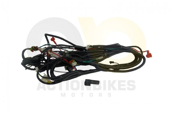 Actionbikes Kabelbaum-Kingwell-KWS14-Q300 4B575331342D31383033 01 WZ 1620x1080