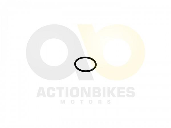 Actionbikes Motor-139QMA-O-Ring-Vergaseransaugstutzen-6x19 4742333435322E312D32302E3658312E39 01 WZ