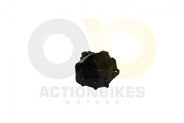 Actionbikes Lingying-250-203E-Lichtmaschinengehuse-schwarz-Mad-Max-250 31323330312D493030382D3130303