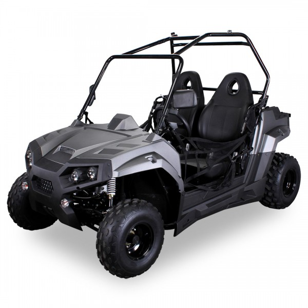 Actionbikes Dinky-150cc-long Carbongrau 39383137303733 360-14 BGW 1620x1080