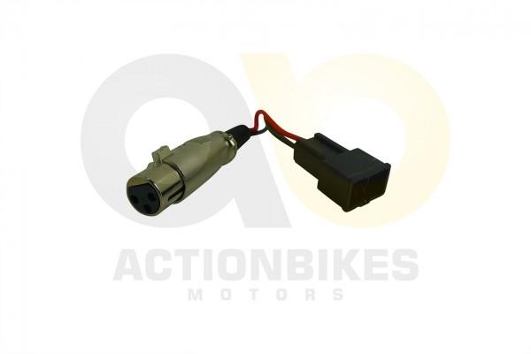 Actionbikes T-Max-eFlux-Externer-Ladestecker-fr-Batteriepack-T-Max-eFlux-Drei-Pin-Weibliche-Kontakte