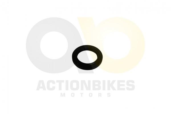 Actionbikes Simmerring-34507--Shi-20STIISTIIE-B-Shi-250STIXE----Shi-250STXE-fr-Kurbelwelle 313030302