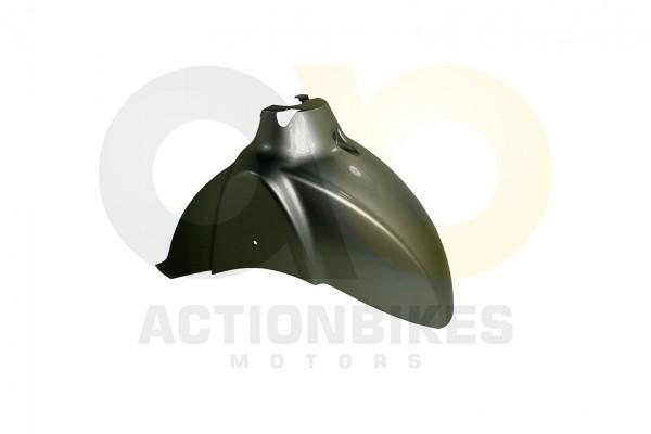 Actionbikes Znen-ZN50QT-F8-Verkleidung-Schutzblech-vorne-gro-silber 353051542D462D3031303030352D32 0