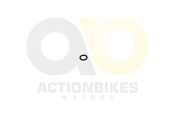 Actionbikes Shineray-XY200STIIEB-O-Ring-kleiner-Deckel-Lichtmaschinengehuse--OT-MarkierungXingyue-AT