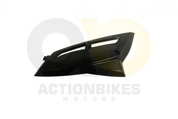 Actionbikes Dinli-450-DL904-Verkleidung-Khler-rechts-schwarz 463135303039392D3938 01 WZ 1620x1080