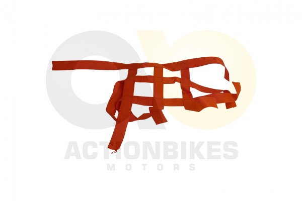 Actionbikes Shineray-XY200STIIE-B-Nervbar-Netz-links-rot 34313138303031312D31 01 WZ 1620x1080