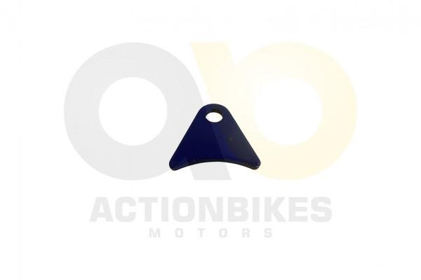 Actionbikes Shineray-XY250ST-9E--SRM--STIXE-Achse-Fixierungsplatte-blau 36343135322D3531362D30303032