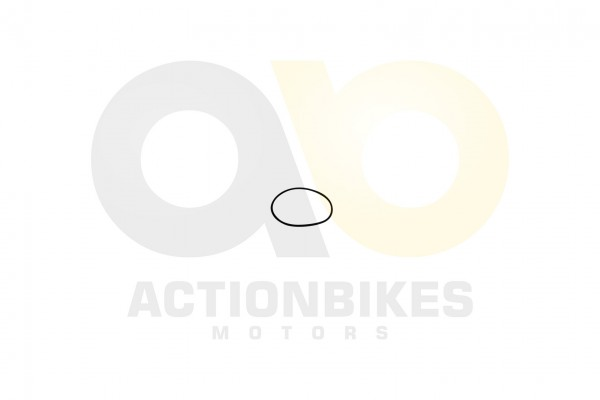 Actionbikes Jetpower-DL702-Differenzial-Dichtring-Elektronik-Box 532D3030352D30304B312D4130 01 WZ 16